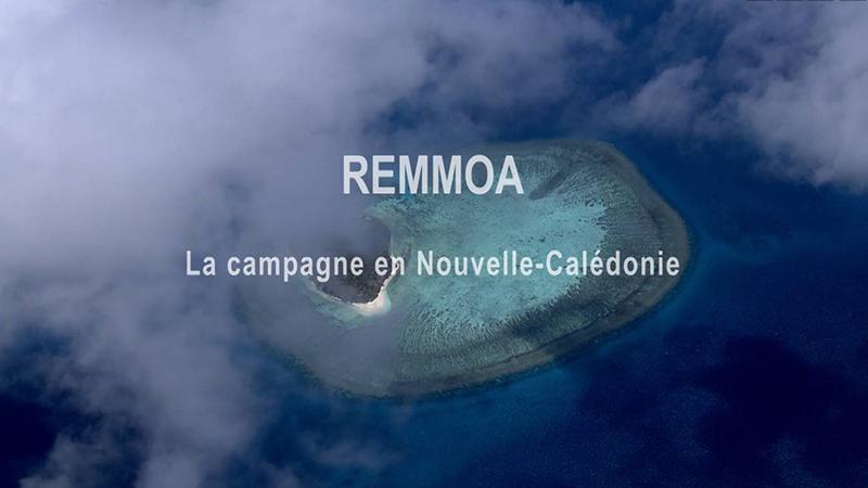 Campagne_article ©Agence des aires marines protégées/observatoire Pelagis – REMMOA 2014