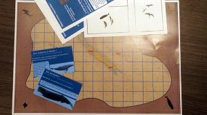 Embarquement sur papier pour des vols océaniques à la rencontre de la mégafaune marine de Nouvelle-Calédonie !
